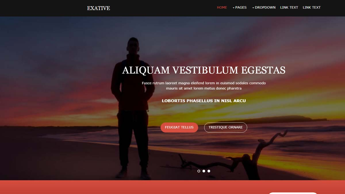responsive html templates easy download