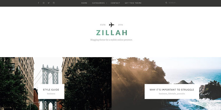 best wordpress website themes