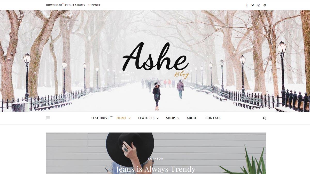 best wordpress templates - ashe blog