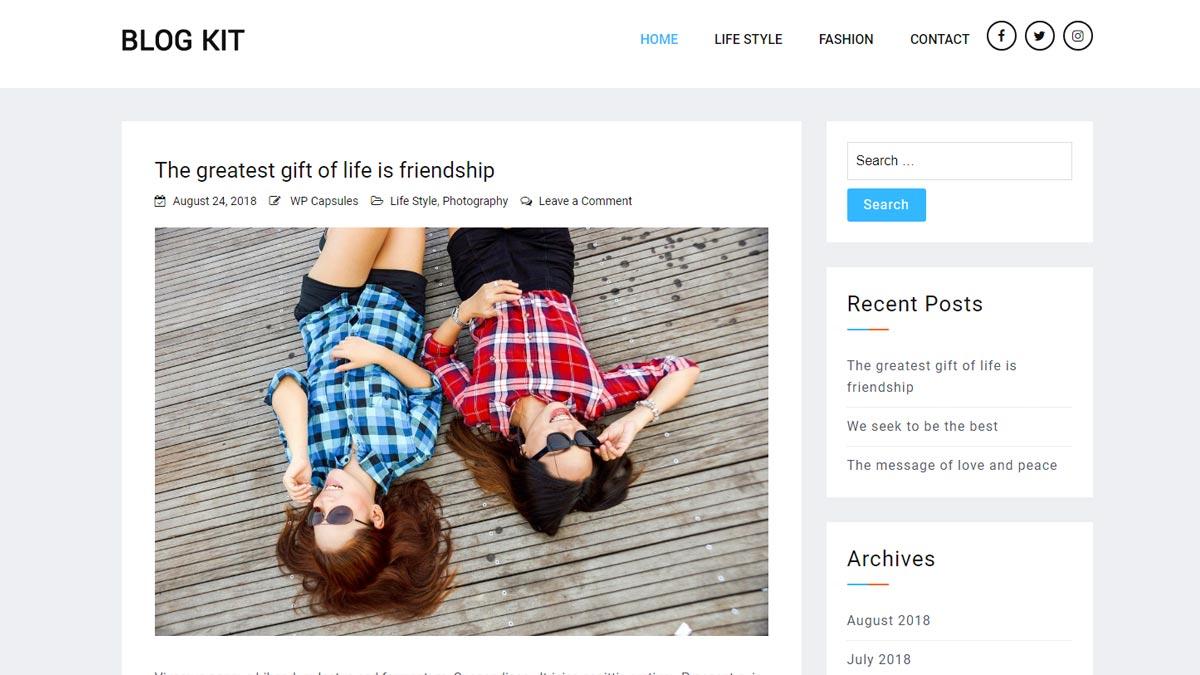 top wordpress themes - blog kit